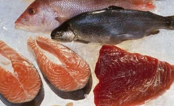 вводим рыбу в прикорм