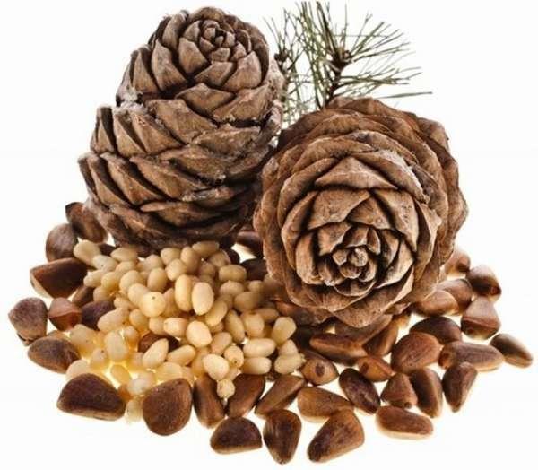 Кедровые орехи - это источник витаминов и минералов, необходимых для беременной женщины