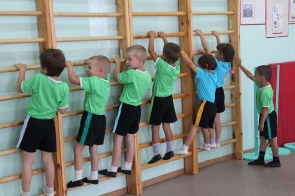 Дети лазят по гимнастической стенке