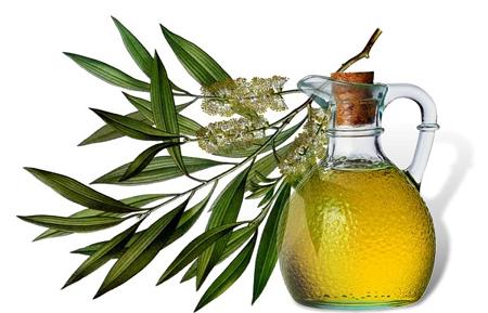 Масло чайного дерева при беременности благоприятным образом воздействует на состояние здоровья