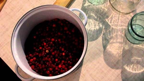 Клюквенный морс имеет приятный вкус, если добавить оптимальное количество сахара