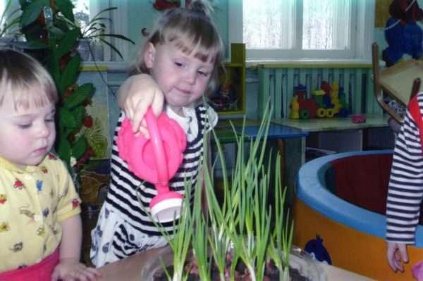 Девочка поливает лук на комнатном огороде