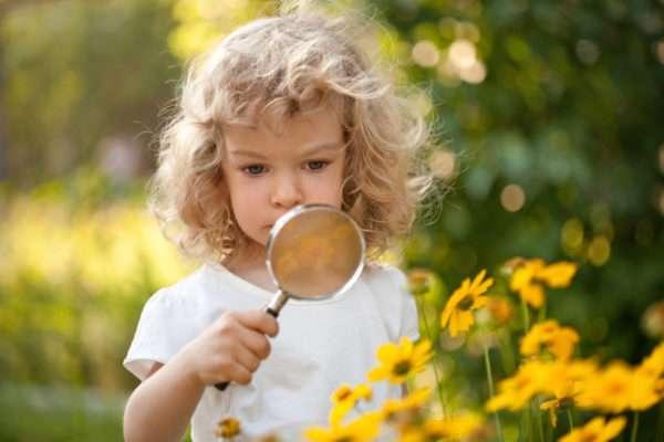 Девочка рассматривает жёлтые цветы через лупу