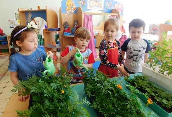 Три девочки и мальчик в группе ухаживают за растениями