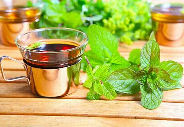 Можно добавлять листья свежей мелиссы в чёрный либо зелёный чай, а можно приготовить и мелиссовый чай