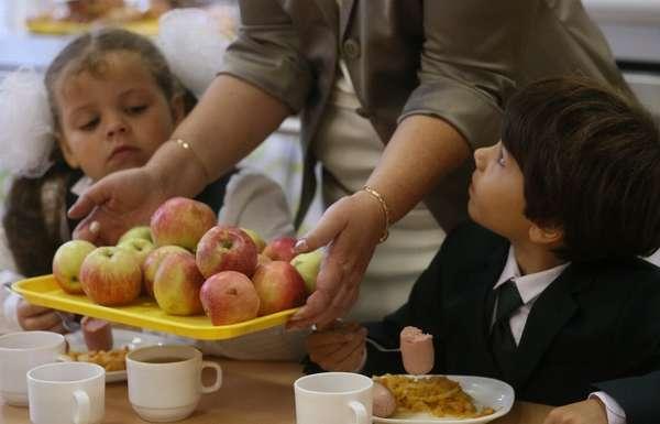 льготы по школьному питанию для многодетной семьи
