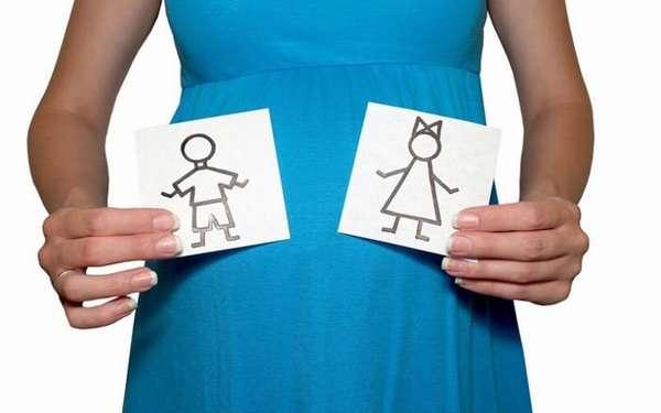 Прежде чем вы попытаетесь выбрать пол ребёнка, надо хорошо понимать, как именно выбирает пол малыша мать Природа