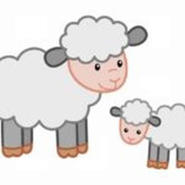 овечка и ягнёнок