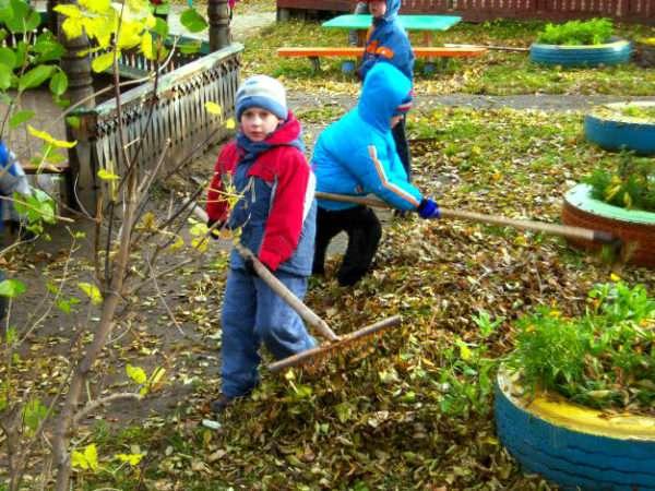 Дети сгребают листья на участке
