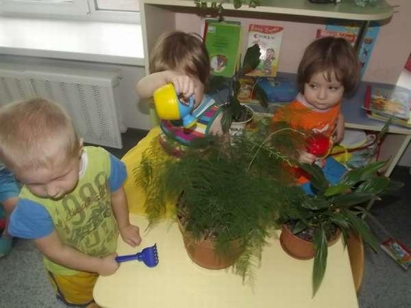 Воспитанники младшей группы исследуют растения в уголке природы