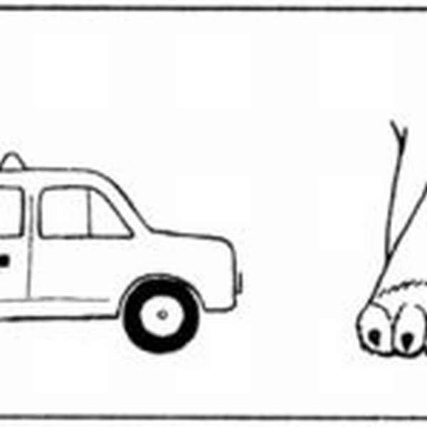 Ребус с такси и лапой