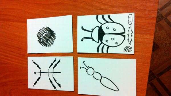 На листах бумаги изображены насекомые и части их тела