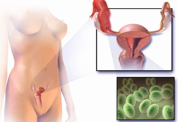 Зачастую микоплазма у беременных женщин не имеет симптомов, поэтому нужно регулярно обследоваться у врача