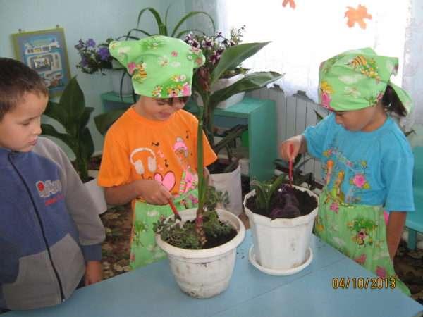 Две девочки в фартуках и косынках ухаживают за комнатными растениями, мальчик наблюдает