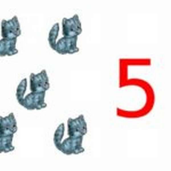 5 котят и цифра 5