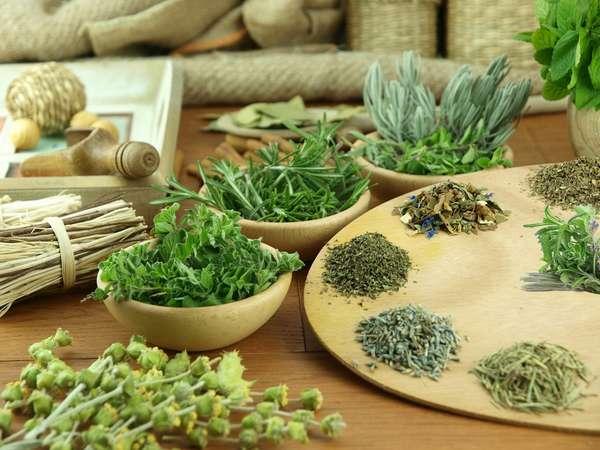 При беременности нельзя пить травы, которые продаются на рынке, поскольку вы не знаете, в каких условиях они хранились
