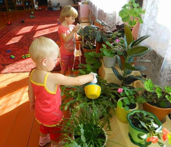 Дети поливают цветы в уголке природы