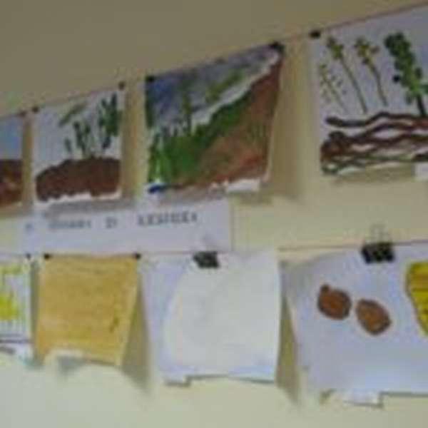 Выставка детских рисунков «От зёрнышка до хлебушка»