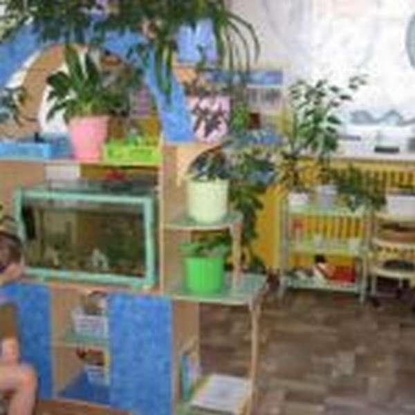 Экологический уголок с комнатными растениями и аквариумом