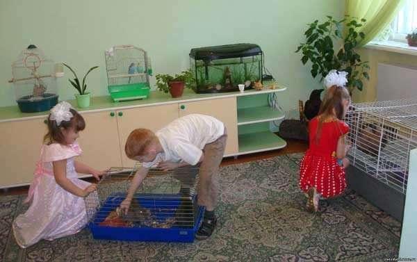 Две девочки и мальчик в живом уголке в детском саду