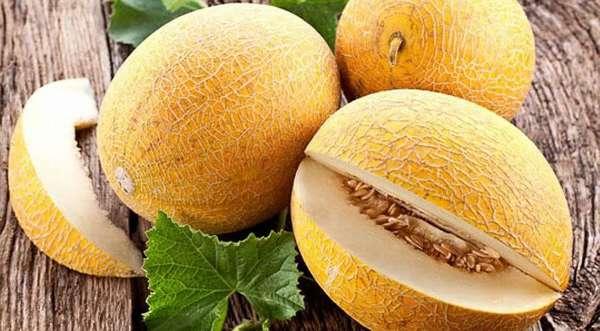 В составе дыни очень много витаминов и минералов, необходимых при беременности