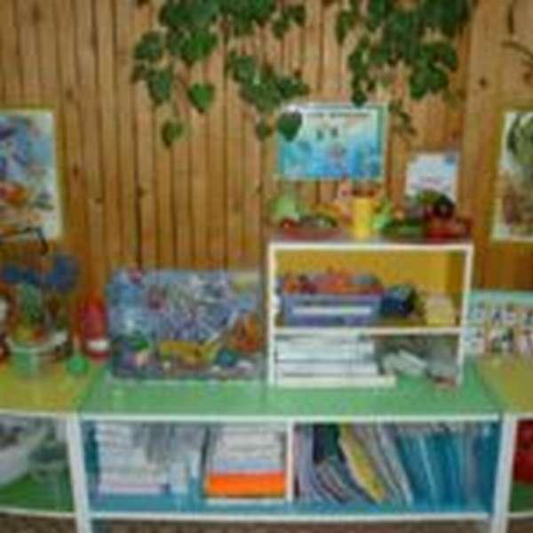 Уголок природы на столе, папки под столешницей, рисунки висят на стене