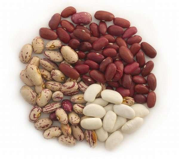 В семенах фасоли содержится фолиевая кислота, которая очень необходима беременной женщине