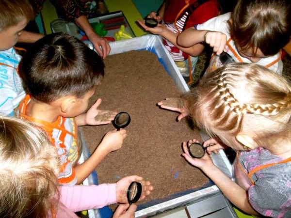 Дети рассматривают песок через лупу
