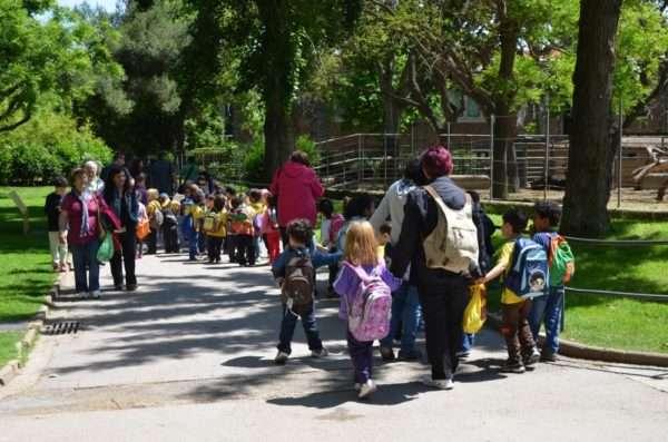 Дошкольники пешком идут на экскурсию
