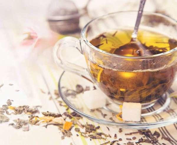 Чай из череды является очень полезным, однако принимать его на ранних сроках беременности противопоказано