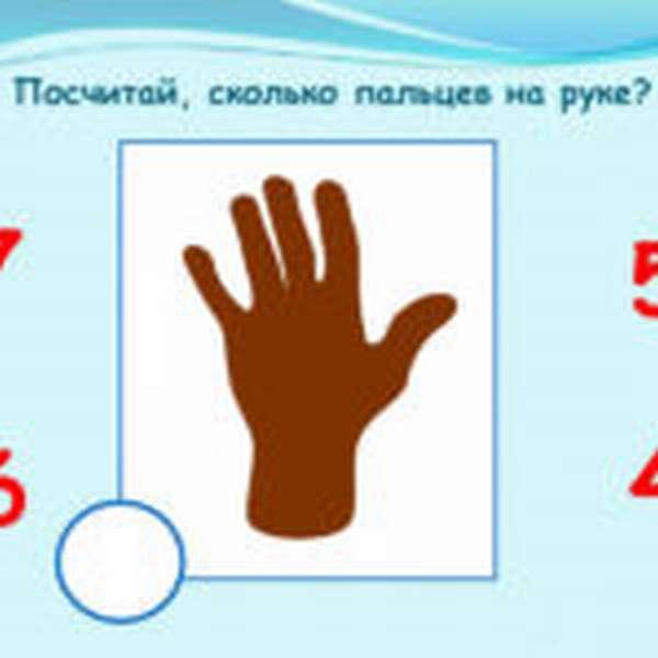 Кисть руки для счёта