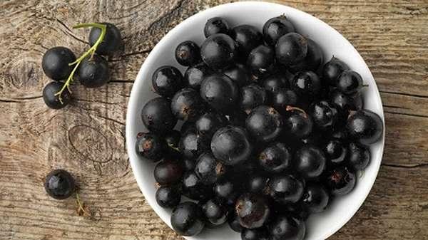 Черная смородина содержит множество витаминов, поэтому ее полезно употреблять при беременности