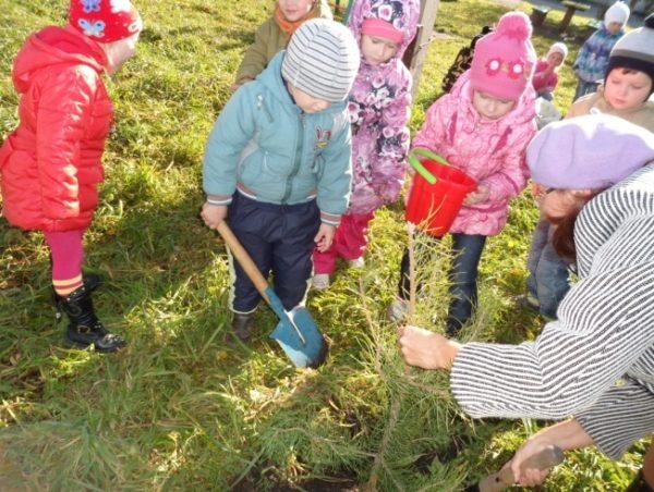 Дети с воспитателем работаю на земле